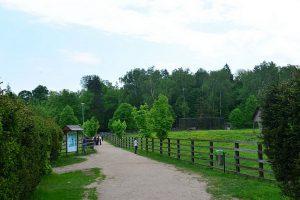 Rezerwat Pokazowy Żubrów - przy wejściu